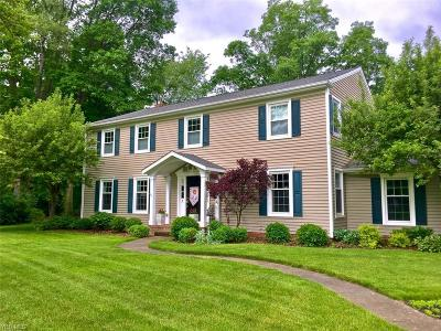 Hudson Single Family Home Active Under Contract: 40 Hickory Lane