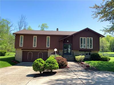 Solon Single Family Home For Sale: 34480 Bainbridge Road