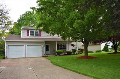 Medina County Single Family Home Active Under Contract: 1890 Lowell Circle