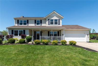 Medina County Single Family Home Active Under Contract: 4955 Cabernet Drive