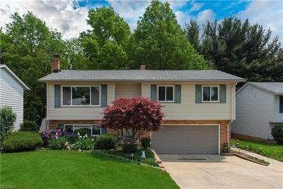 Parma Single Family Home For Sale: 6415 Goebel Drive