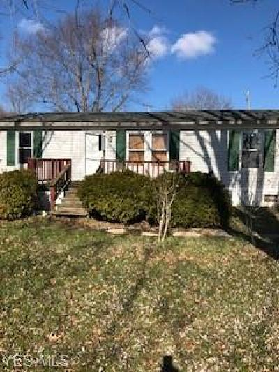 Guernsey County Single Family Home For Sale: 9709 Indian Lake Road