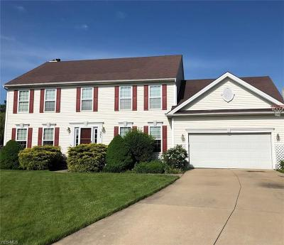 Single Family Home For Sale: 361 Cascade Court