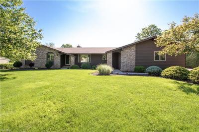 Medina County Single Family Home Active Under Contract: 3989 Huffman Road
