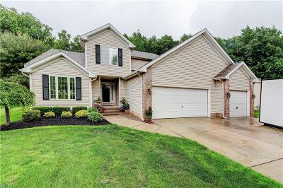Mentor Single Family Home For Sale: 5439 Heather Hill Drive