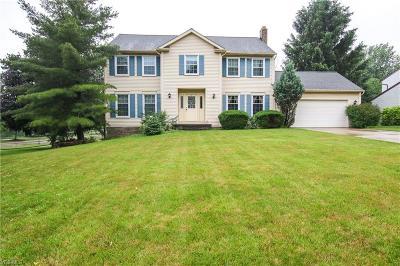 Solon Single Family Home For Sale: 33189 Seneca Drive