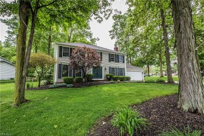 Deerfield Lake Single Family Home Active Under Contract: 17200 Misty Lake Drive