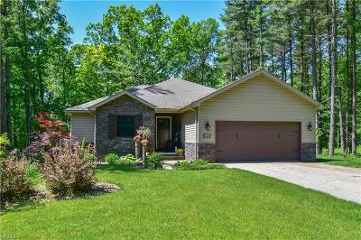 Canfield Single Family Home Active Under Contract: 11365 Kiwatani Trail