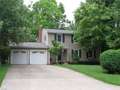Hudson Single Family Home For Sale: 5890 Brewster Drive