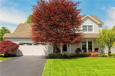 Youngstown Single Family Home For Sale: 2791 Spring Meadow Circle