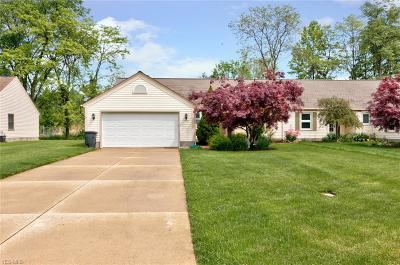 Painesville Single Family Home Active Under Contract: 570 Greenside Drive