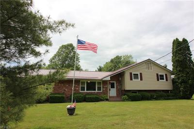 Madison Single Family Home For Sale: 5490 Chapin Road