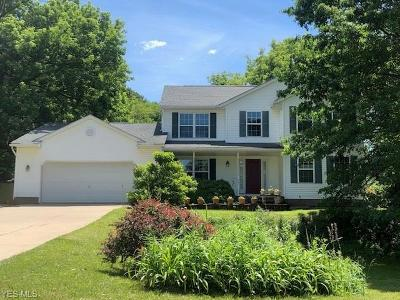 Kent Single Family Home For Sale: 341 Majors Lane