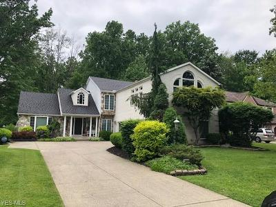 Westlake Single Family Home For Sale: 3810 Willow Run