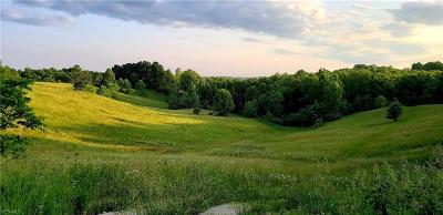 Muskingum County Farm & Ranch For Sale: 8915 Hoop Pole Road