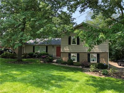 Aurora Single Family Home For Sale: 830 S Parkview Drive