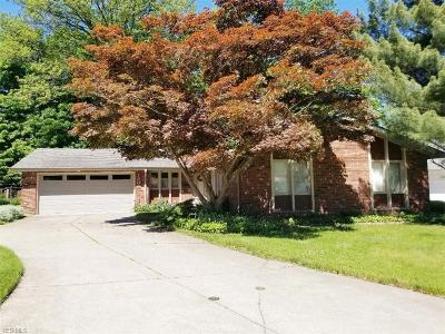 Rocky River Single Family Home For Sale: 1300 Medfield Drive