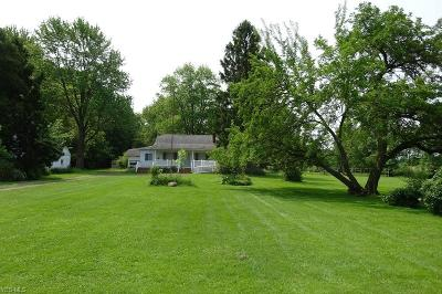 Olmsted Township Single Family Home For Sale: 27009 Bagley Road
