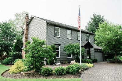 Chagrin Falls Single Family Home For Sale: 17380 Haskins Road