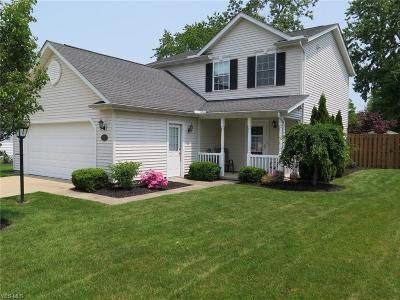 Painesville Single Family Home Active Under Contract: 950 Lake Terrace Drive