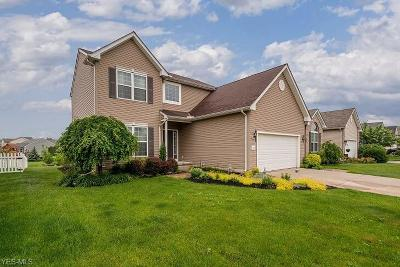 North Ridgeville Single Family Home For Sale: 5090 Ravenway Drive