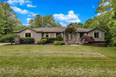 Royalton Single Family Home For Sale: 18026 State Road