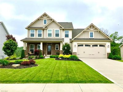 Twinsburg Single Family Home For Sale: 7957 Megan Meadow Drive