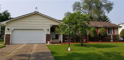 Middleburg Heights Single Family Home For Sale: 13924 Cherokee Trail