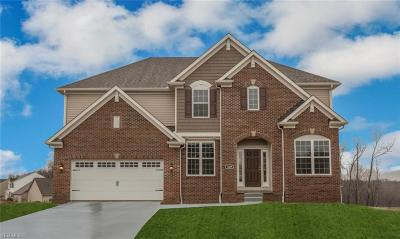 Strongsville Single Family Home For Sale: 10480 Rosalee Lane