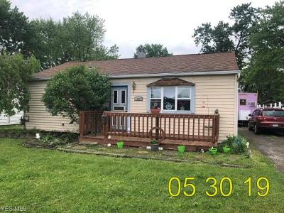 Elyria Single Family Home For Sale: 339 Brandston Avenue