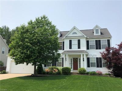 Medina County Single Family Home For Sale: 1063 Continental Drive