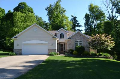 Twinsburg Single Family Home For Sale: 9529 Andrew Drive