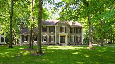 Hudson Single Family Home For Sale: 240 Bridgewater Circle