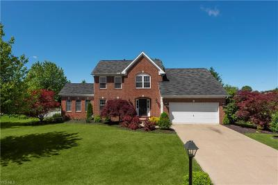 Avon Single Family Home For Sale: 4742 Belmont Drive