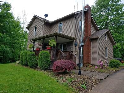 Canfield Single Family Home For Sale: 4568 S Raccoon Road