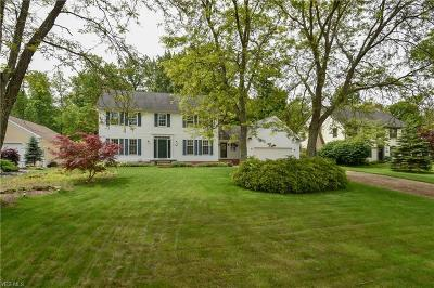 Poland Single Family Home Active Under Contract: 3093 Southwind Trail