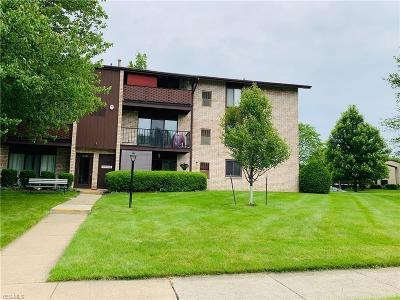 Middleburg Heights Condo/Townhouse Active Under Contract: 16350 Heather Lane #S204