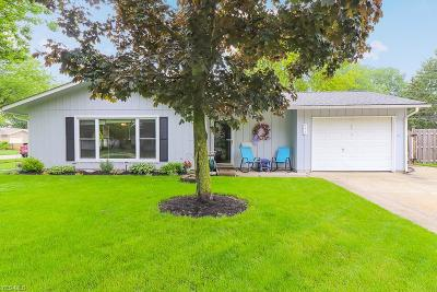 Berea Single Family Home Active Under Contract: 771 Trotter Lane