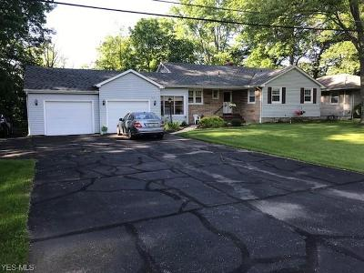 Elyria Single Family Home For Sale: 1073 Rosealee Avenue