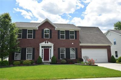 Twinsburg Single Family Home Active Under Contract: 9088 Jody Lynn Lane