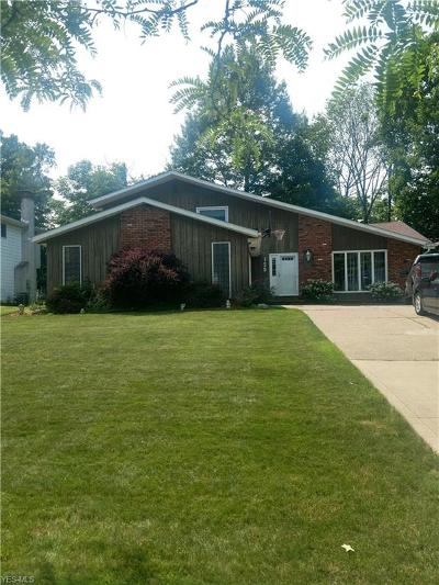 Medina County Single Family Home For Sale: 128 Claremont Drive
