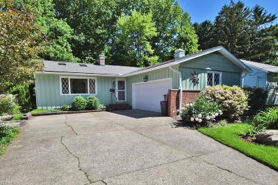 Willoughby Single Family Home For Sale: 38257 Roselawn Avenue