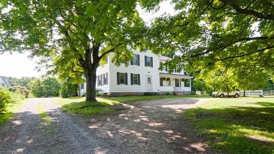 Garrettsville Single Family Home For Sale: 11554 Windham Parkman Road