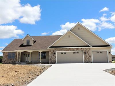 Canfield Single Family Home Active Under Contract: 3925 Mary Way