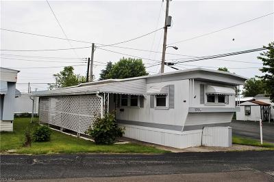 Cleveland Single Family Home For Sale: 8250 Russell Lane