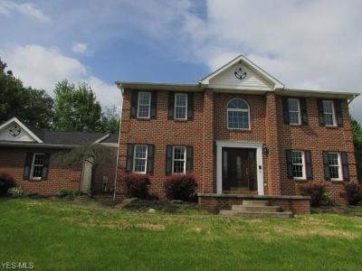 Struthers Single Family Home For Auction: 216 Misty Woods Court