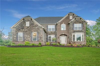 Brecksville, Broadview Heights Single Family Home For Sale: 9013 Mullberry Point