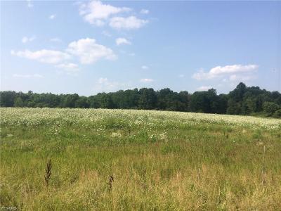North Royalton Residential Lots & Land For Sale: Ridge Road