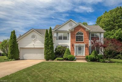 Concord Single Family Home For Sale: 10015 Stone Hollow Road