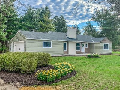 Hudson Single Family Home For Sale: 2909 Old Mill Road